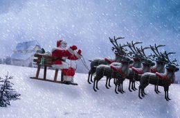 Renifery z zaprzęgu świętego Mikołaja to kobiety! To było oczywiste