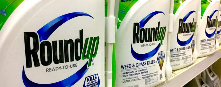 Roundup to handlowa nazwa glifosatu Fot. Mike Mozart/Flickr