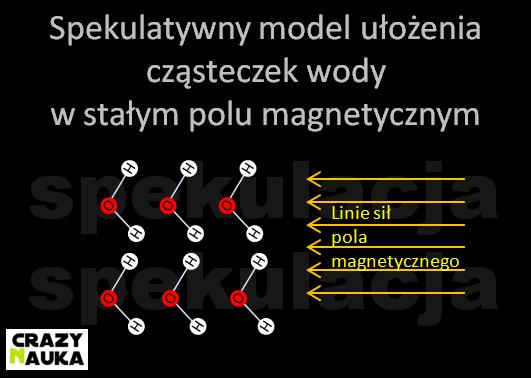 Spekulatywny model ułożenia cząsteczek wody w stałym polu magnetycznym
