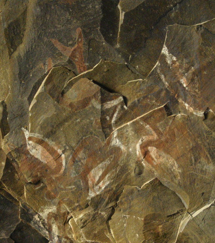 Malowidła w w jaskini Ana Kai Tangata fot. Zuzanna Jakubowska-Vorbrich