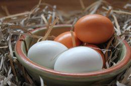Fizyka idealnego gotowania jajek. Polecamy kalkulator!