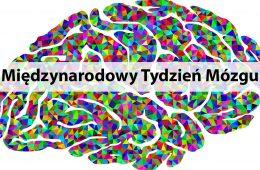 Międzynarodowy Tydzień Mózgu