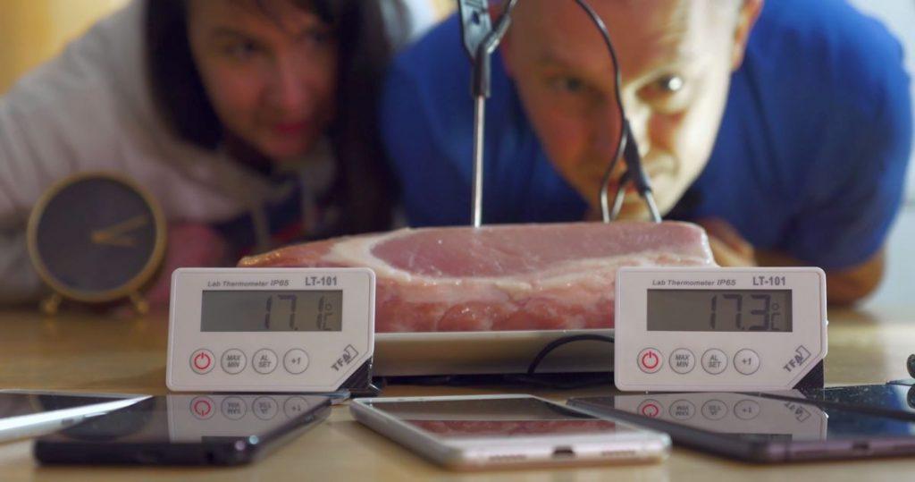 Eksperyment badający, czy mięso nagrzewa się pod wpływem fal z telefonów komórkowych. Fot. Crazy Nauka