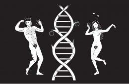 Neuroerotyka, czyli seks od naukowej strony i w najlepszym wydaniu