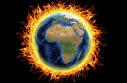 Jak zniszczyliśmy połowę życia na Ziemi