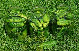 Ogórki małosolne – kiszonki, czyli polski przepis na superfood