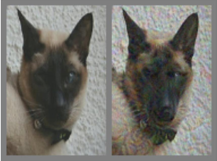 Po lewej mamy obrazek kota, natomiast po prawej? To kot, czy już pies? Źródło: https://arxiv.org/pdf/1802.08195.pdf