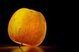 Jak jedzenie wpływa na nasz organizm? Jak zdobyć konkretną wiedzę?