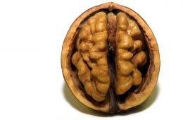 Bezpłatny kurs online o wpływie żywności na funkcje mózgu i zachowanie człowiekaorazo superżywności