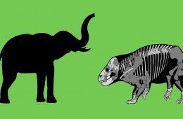 Polski gigant z początków ery dinozaurów – odkrycie kuzyna ssaków cięższego od słonia