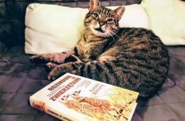 Jak naprawdę zrozumieć zwierzęta - znakomita książka o komunikacji między gatunkami i nie tylko