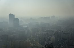 Jak zanieczyszczone powietrze niszczy mózg