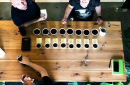 Cupping czyli testowanie kawy w Coffee Journey