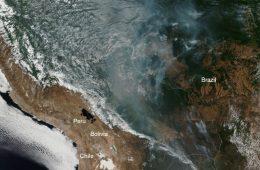 Teraz płoną lasy amazońskie - czy faktycznie jest gorzej niż w ostatnich latach?