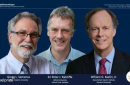 Nobel z fizjologii za odkrycie mechanizmów niedotlenienia i ich związków z nowotworami