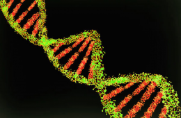 Analiza całego genomu pomaga w walce z opornym na leczenie rakiem piersi