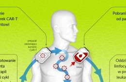Komórki CAR-T, czyli jak nauczyć układ odpornościowy walki z nowotworem