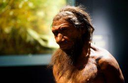 Neandertalczycy byli sprawnymi rybakami - czyli co mówi prehistoryczny śmietnik