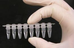 Jerzy Zięba nie ma kompetencji, aby oceniać testy na koronawirusa