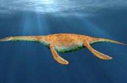 Na co chorowały prehistoryczne gady – Polak odkrywa ślady chorób sprzed 200 mln lat