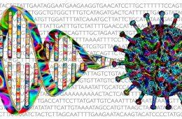 Ciężki przebieg COVID-19 może być uwarunkowany genetycznie