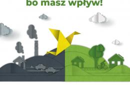 W aplikacji Kanarek możesz walczyć o lepsze powietrze w swoim mieście