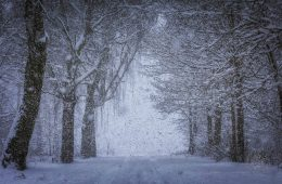 Mit: skoro mamy mroźną zimę, to gdzie się podziało globalne ocieplenie?