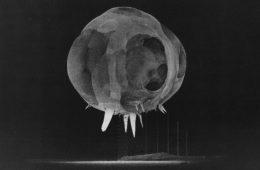 Dlaczego wybuch atomowy wygląda na początku tak dziwnie?