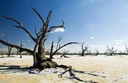 Klimat psuje się coraz szybciej i intensywniej – IPCC publikuje ważny i niepokojący raport